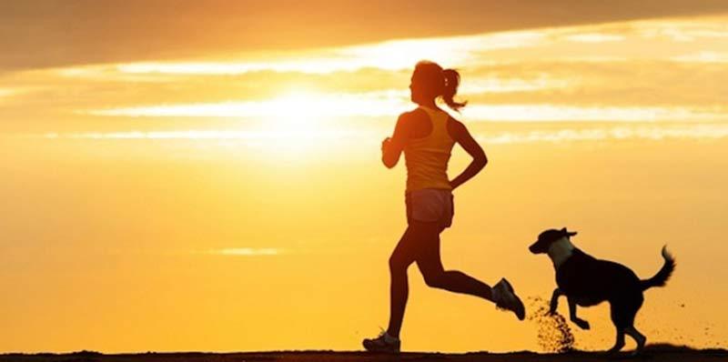 Tập thể dục mỗi đêm để dễ dàng đi vào giấc ngủ. (Ảnh: Internet).
